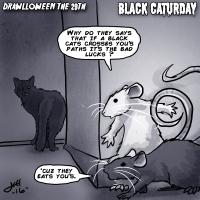 29 Black Caturday