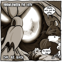 14 Owl Be Back